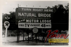 Nat-Bridge-1
